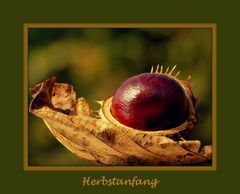 Zum Beginn der Herbstzeit....