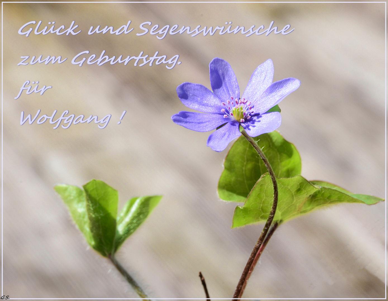 Zum Geburtstag Die Besten Glückwünsche Von Gerdi Foto Bild