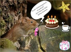 Zum Geburtstag ...