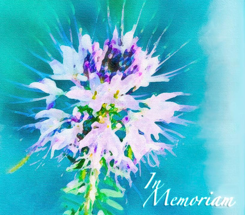 Zum Gedenken