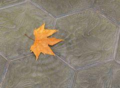 Zum heutigen Herbstanfang
