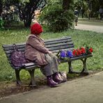 zum Leben zu wenig ...... Polen 1984 (Dia-Scan)