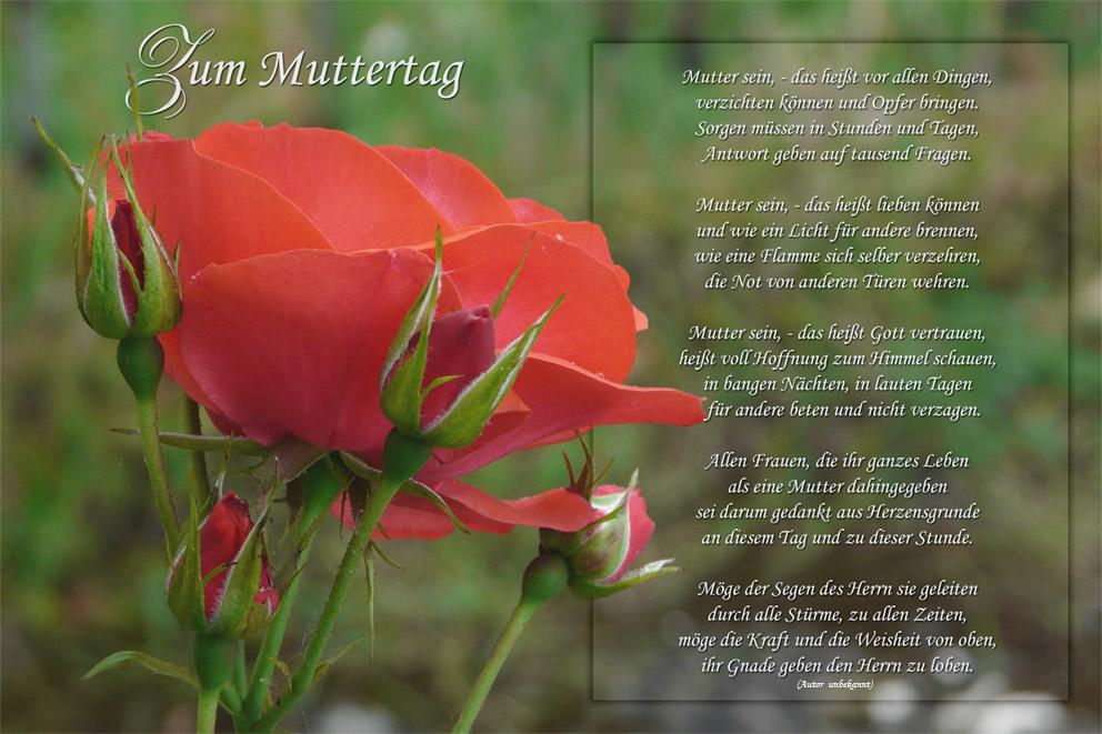 Gedicht zum muttertag ein schönes Muttertagsgedichte: Die
