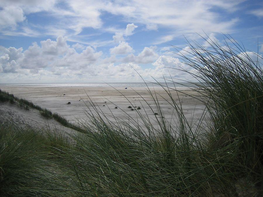 Zum Strand...