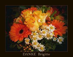 """ZUM THEMA: """"DANKE  Brigitte"""""""