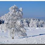 """Zum Thema """"Der Winter zeigt sich"""""""