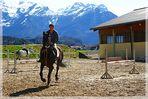 ZUM THEMA: Pferdestärken