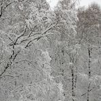 """Zum Thema """"Winterzauber"""""""