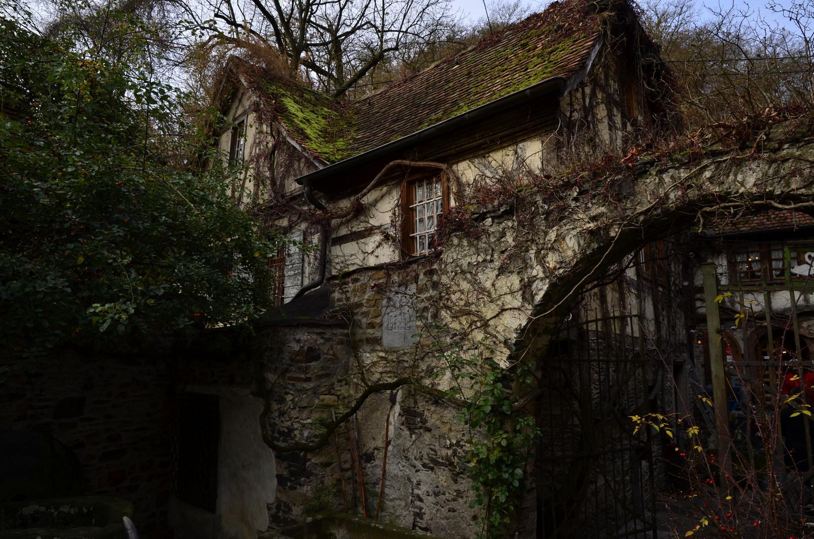Zur alten Mühle