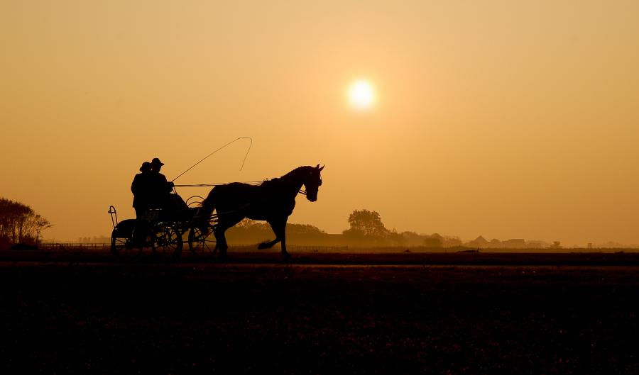 Zur frühen Stunde auf Texel...