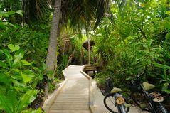Zur Jungle-Villa