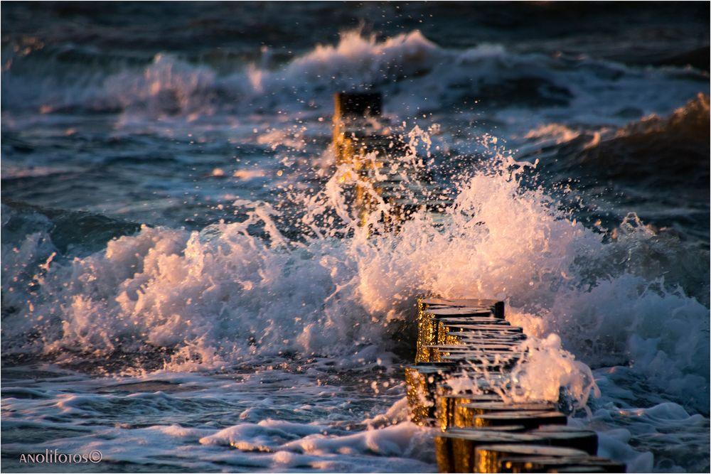 Zurück von der Ostsee