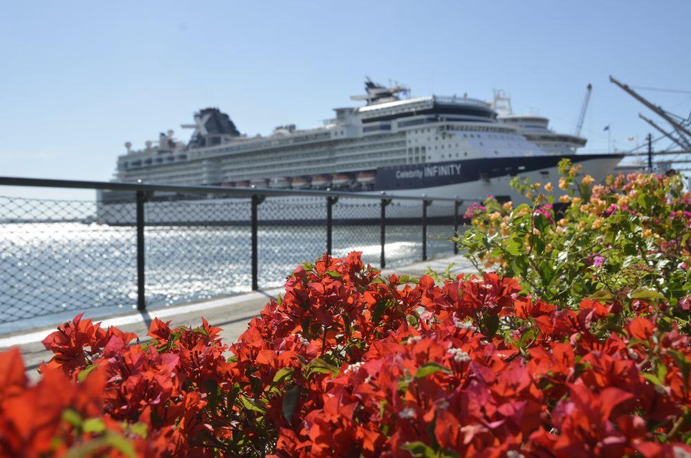 zurück zum Schiff/Hotel