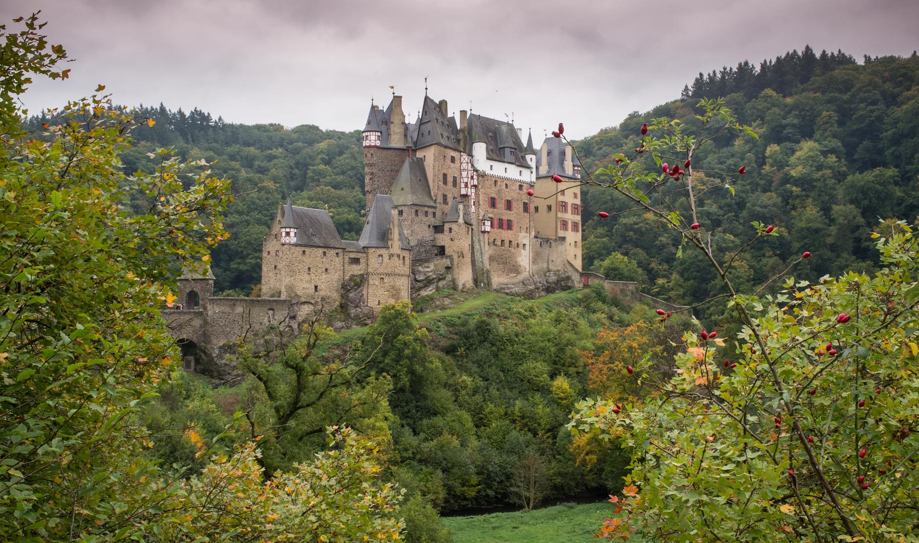 Zurück zur Burg Eltz