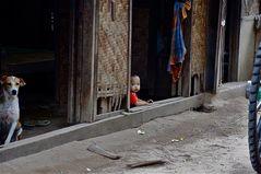 zusammenleben am hof, dorf bei bagan, burma 2011