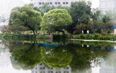 zwei Bäume - liáng shù ....