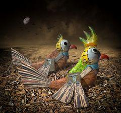 Zwei bunte Vögel