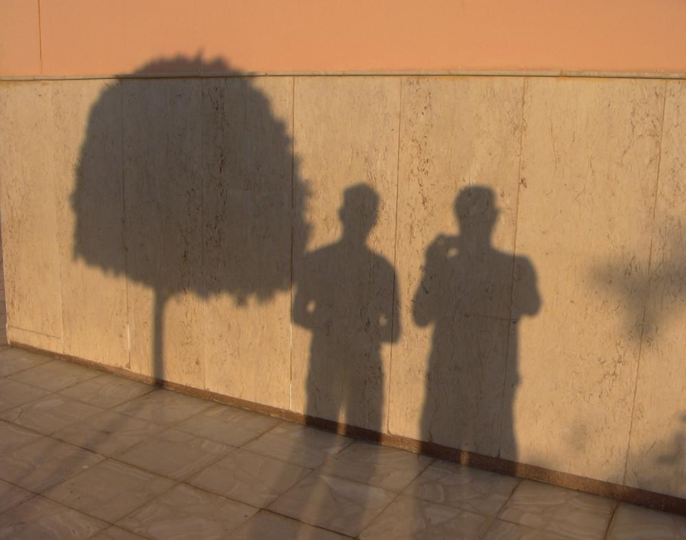 Zwei Fotografen und ein Baum