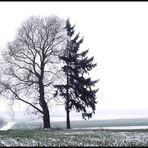 Zwei im Nebel