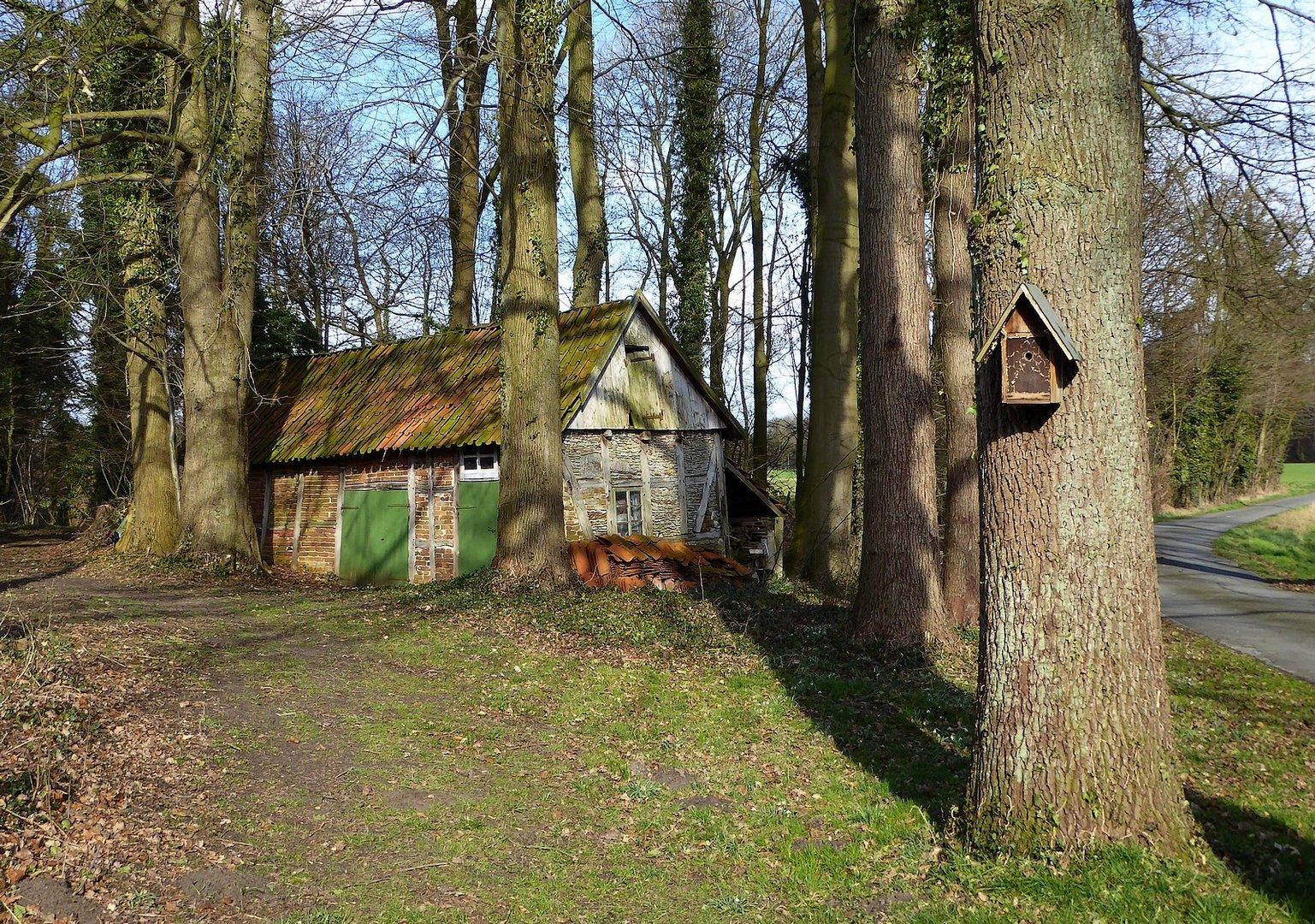 Zwei sehr ländliche Unterkünfte am Waldrand  :-)