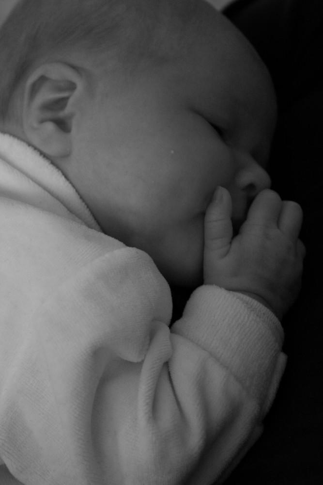 zwei Wochen alt