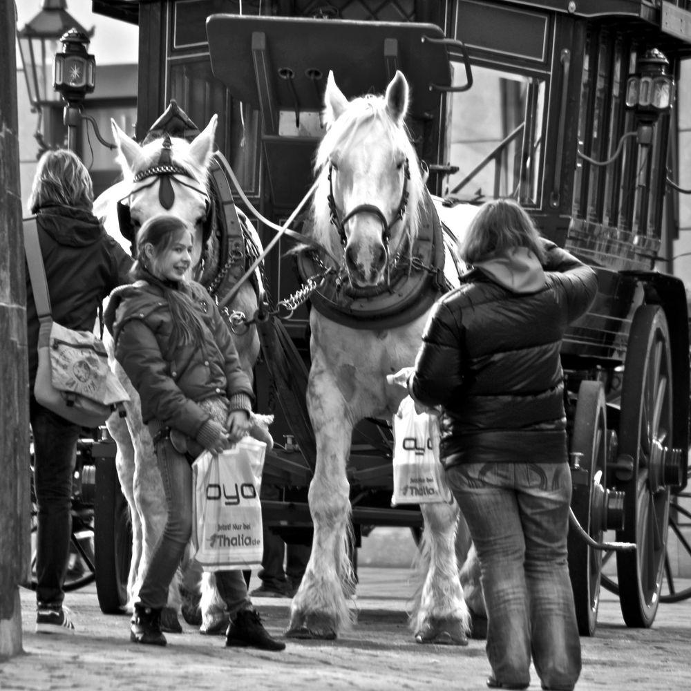 Zweimal OYO und ein Pferd