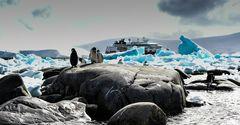 Zwischen Eis und Felsen                   .DSC_7129-3