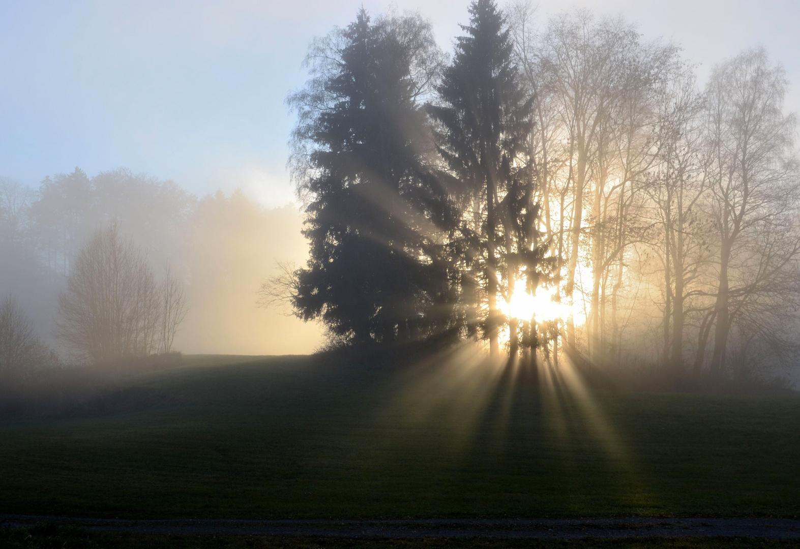 Zwischen Nebel und blauem Himmel