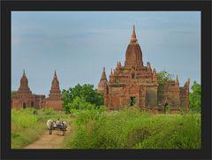 Zwischen Tempeln und Ruinen