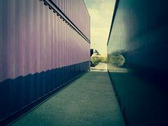 Zwischen zwei Containern