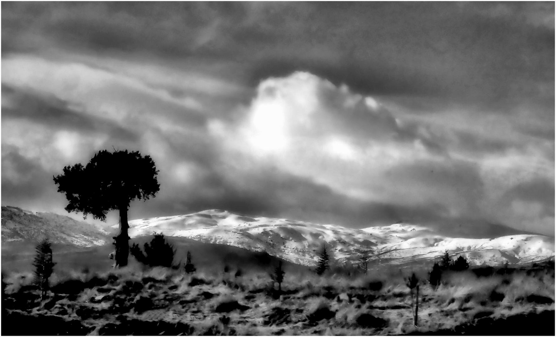 Zypern - Landschaft
