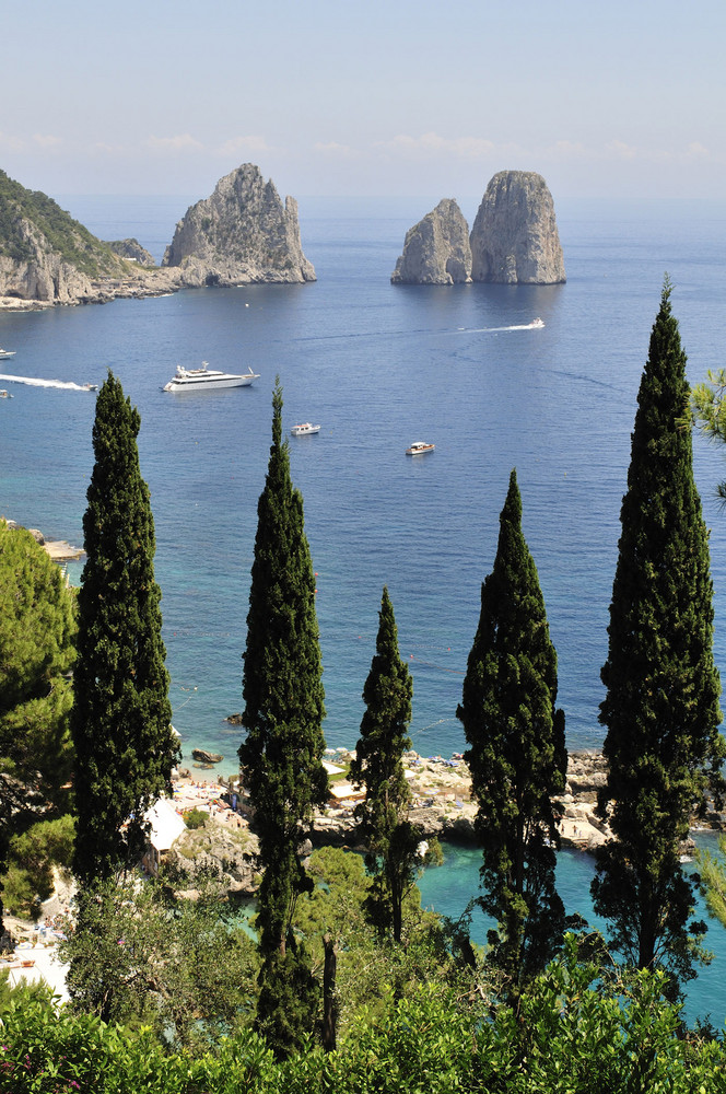 Zypressen vor den Faraglioni-Felsen bei Capri